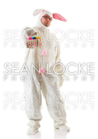 Bunny: Stock Photography Content by Sean Locke