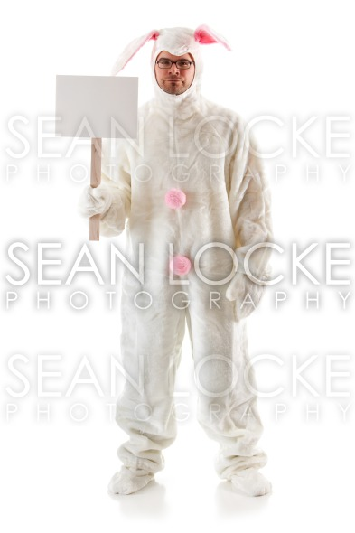 Bunny: Easter Bunny on Strike Stock Photography Content by Sean Locke