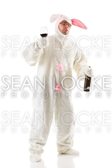 Bunny: Rabbit Has Too Much to Drink Stock Photography Content by Sean Locke