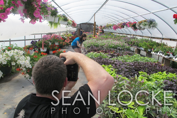 stock photo photographer in greenhouse